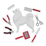 Mieszkanie przygotowywa salonu wyposażenia set, psi ostrzyżenie wytłacza wzory ikony Doggy groomer kolekcja, gwoździa cążki, kraj Zdjęcia Royalty Free