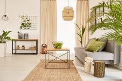 Mieszkanie z roślinami i leżanką obrazy stock