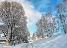 Mieszkaniowego okręgu Tiller po śnieżycy zdjęcie stock
