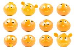 śmieszna clementines kolekcja Fotografia Stock