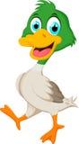Śmieszna dziecko kaczki kreskówka pozuje dla ciebie projektuje Fotografia Stock