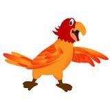 śmieszna kreskówki papuga Obrazy Royalty Free