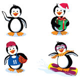 śmieszni pingwiny Zdjęcie Stock