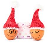 Śmieszni uroczy jajka w zimy Santa kapeluszu Obrazy Stock