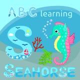 Śmieszny dennego zwierzęcia abecadło S jest dla Seahorse kreskówki Ślicznego seahorse, czerwonego korala gałąź i gałęzatki wektor Obraz Stock