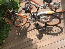 Miete durch bewegliche Anwendung ` mobike ` Marke fährt Parken auf hölzerner Wegweise nach sentosa rad stockbild