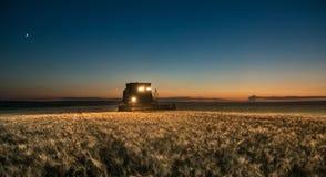 Mietitrebbiatrice che lavora al raccolto del grano alla notte Immagini Stock