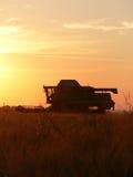 Mietitrebbiatrice di tramonto Fotografia Stock Libera da Diritti