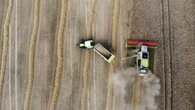Mietitrebbiatrice e trattore che lavorano al giacimento di cereale stock footage