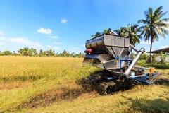 Mietitrebbiatrice nel giacimento del riso Fotografia Stock Libera da Diritti