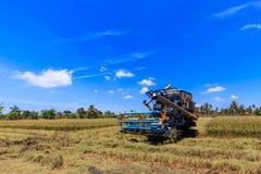 Mietitrebbiatrice nel giacimento del riso Fotografie Stock Libere da Diritti
