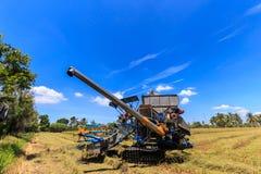 Mietitrebbiatrice nel giacimento del riso Immagini Stock Libere da Diritti