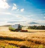 Mietitrebbiatrice su un giacimento di grano agricoltura Fotografia Stock