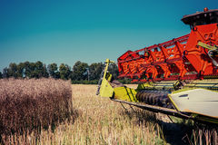 Mietitrebbiatrice su un giacimento di grano agricoltura Fotografie Stock