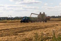 Mietitrebbiatrice su un giacimento di grano con il trattore Immagine Stock