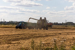 Mietitrebbiatrice su un giacimento di grano con il trattore Immagini Stock Libere da Diritti