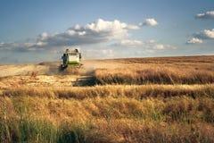 Mietitrebbiatrice sul giacimento di grano Fotografia Stock