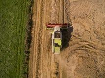 Mietitrebbiatrice - vista aerea della mietitrebbiatrice moderna a raccogliere il grano sul giacimento di grano dorato di estate Immagine Stock Libera da Diritti