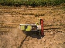 Mietitrebbiatrice - vista aerea della mietitrebbiatrice moderna a raccogliere il grano sul giacimento di grano dorato di estate Immagine Stock
