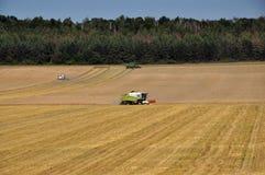 Mietitrebbiatrici sul giacimento di grano Fotografia Stock Libera da Diritti