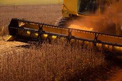 Mietitrice che fa raccolta del giacimento della soia - Mato Grosso State - Immagini Stock