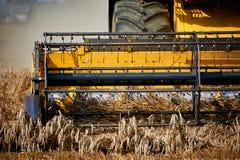 Mietitrice che lavora al giacimento di grano Fotografia Stock
