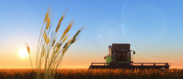Mietitrice del grano Fotografia Stock Libera da Diritti