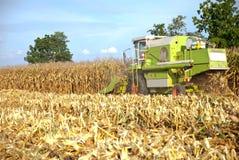 Mietitrice di cereale, mietitrice di cereale in Tailandia Fotografie Stock