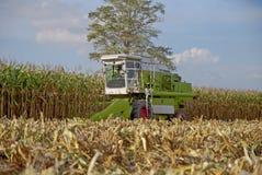 Mietitrice di cereale, mietitrice di cereale in Tailandia Fotografia Stock Libera da Diritti