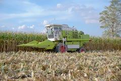 Mietitrice di cereale, mietitrice di cereale in Tailandia Fotografia Stock