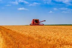 Mietitrice in un campo di grano su cielo blu fotografie stock