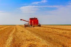 Mietitrice in un campo di grano su cielo blu fotografia stock