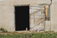 Miezekatze in einer Tür Lizenzfreie Stockbilder