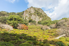 Mifuneyama Rakuen garden in Saga, northern Kyushu, Japan Royalty Free Stock Photography