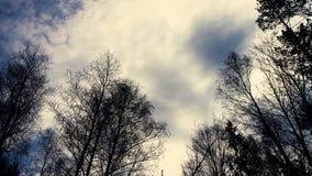 MIG samolotowy latanie w niebie above zbiory wideo