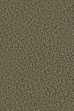 Miga de piedra, textura Imágenes de archivo libres de regalías