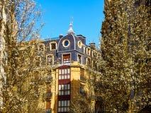 Migdałowi drzewa kwitnie na ulicie w mieście San Sebastian z typowym Europejskim budynkiem w tle San Sebastian, fotografia royalty free