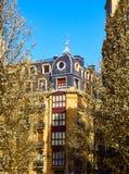 Migdałowi drzewa kwitnie na ulicie w mieście San Sebastian z typowym Europejskim budynkiem w tle San Sebastian, obrazy royalty free