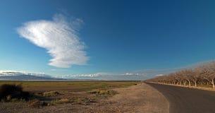 Migdałowy sad pod soczewkowatymi chmurami w Środkowym Kalifornia blisko Bakersfield Kalifornia obraz stock