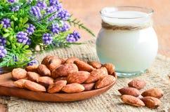 Migdału mleko Fotografia Stock