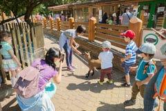 Migdalić zoo, kózki i dzieci, Zdjęcie Stock
