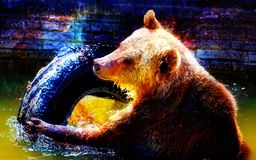 Mighty bear in space. Photos with graphic effect. Computer collage. Cosmic space. Stock Photos