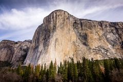 The Mighty El Capitan and surrounding forest stock photo
