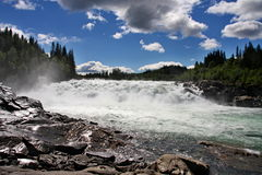 Mighty rapids in Norway Stock Images