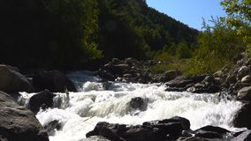 The mighty swift mountain river with cascades flows through the valley. 4k UHD stock video footage