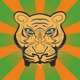 Mighty tiger face Stock Photos