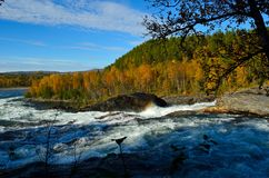 Mighty waterfall in autumn with colorful forest and small rainbow created by water. Mist Stock Images