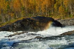 Mighty waterfall in autumn with colorful forest and small rainbow created by water vapor. Mighty waterfall in autumn with colorful forest and small rainbow Royalty Free Stock Photo