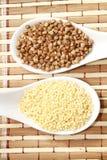 Miglio e grano saraceno Fotografia Stock