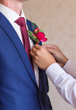 Migliore uomo che regola il primo piano del Boutonniere dello sposo Fotografia Stock Libera da Diritti